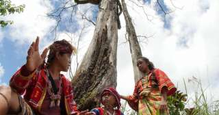 ​Film on Lumad struggle bags 6 major awards in 2017 Sinag Maynila film fest